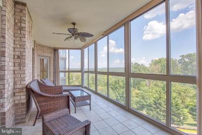 Leesburg Condo For Sale: 19355 Cypress Ridge Terrace #317