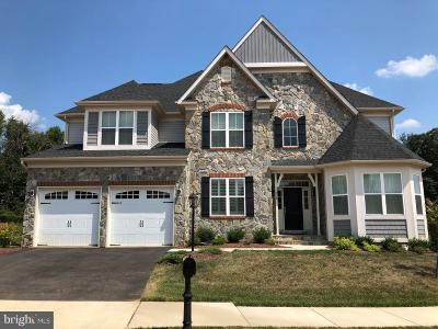 Round Hill Single Family Home For Sale: 17218 Creekside Green Place