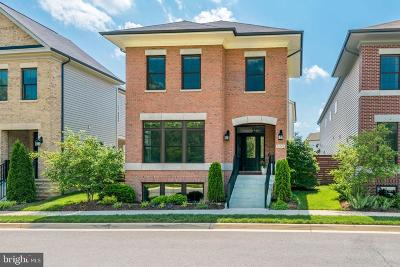 Ashburn Single Family Home For Sale: 20389 Savin Hill Drive