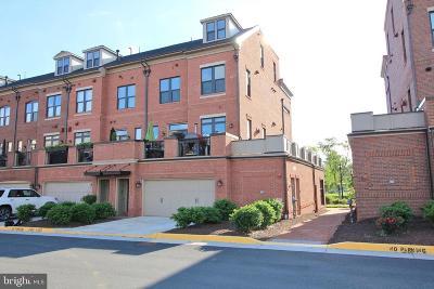 Leesburg Condo For Sale: 419 Kornblau Terrace SE