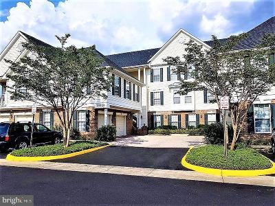 South Riding VA Condo For Sale: $312,000