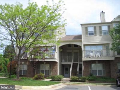 Fairfax County, Fairfax City, Loudoun County, Montgomery County, Prince George County, Prince William County, Frederick County, Fredericksburg City Condo For Sale: 46876 Clarion Terrace #200