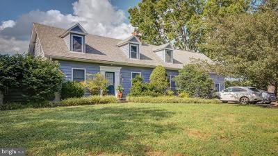 Leesburg Single Family Home For Sale: 38978 Goose Creek Lane