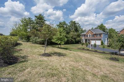 Aldie Single Family Home For Sale: 41504 Hitchin Court