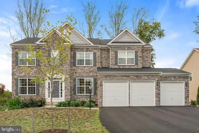 Aldie Single Family Home For Sale: 23941 Mill Wheel Place