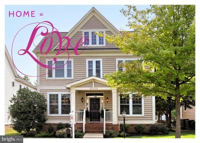 Brambleton Single Family Home For Sale: 23008 White Ibis Drive