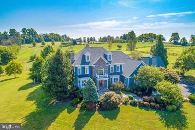 Loudoun County Single Family Home For Sale: 16080 Gold Cup Lane