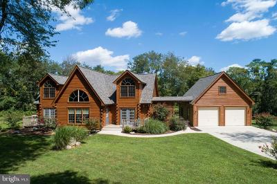 Lovettsville Single Family Home For Sale: 38019 Fleming Farm Lane