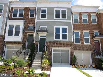 Loudoun County Townhouse For Sale: 42657 Redeemer Terrace