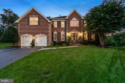 Sterling Single Family Home For Sale: 20567 Noland Woods Court