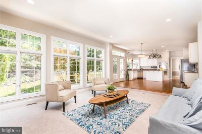 Leesburg Single Family Home For Sale: 43268 Hill Head Place
