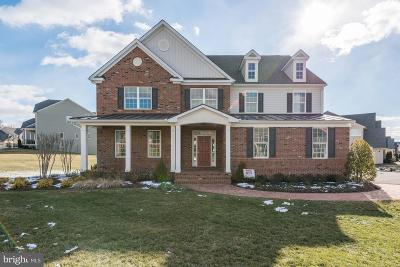 Aldie Single Family Home For Sale: 24480 Lenah Trails Place