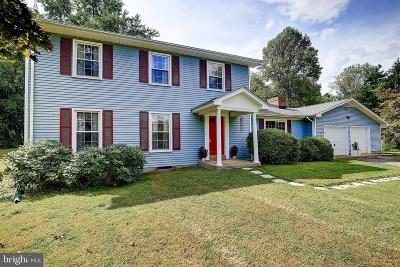Leesburg Single Family Home For Sale: 39649 Surreyfield Way