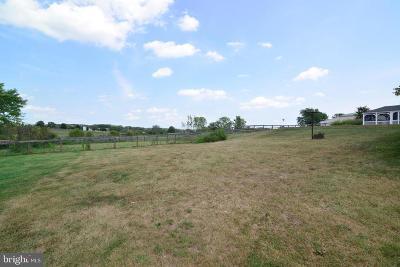 Leesburg Single Family Home For Sale: 14290 Chapel Lane