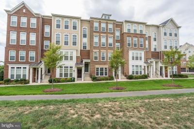 Chantilly Condo For Sale: 43526 Stonecliff Terrace