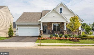 Chantilly Single Family Home For Sale: Crusher Drive