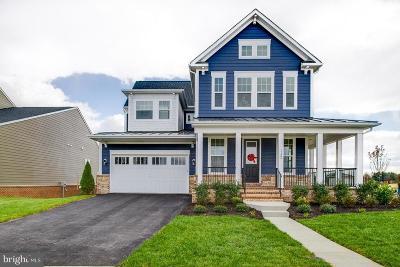Leesburg Single Family Home For Sale: 20 Akan Street SE