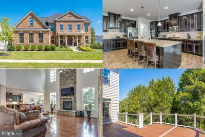 Ashburn Single Family Home For Sale: 24150 High Falls Court