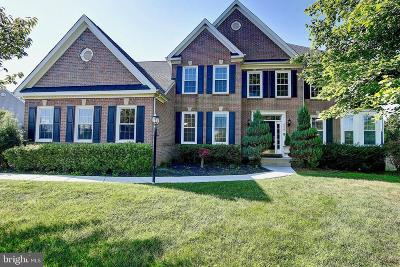 Ashburn Single Family Home For Sale: 44247 Oldetowne Place