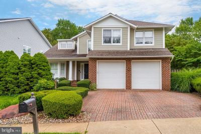 Sterling Single Family Home For Sale: 20456 Tappahannock Place