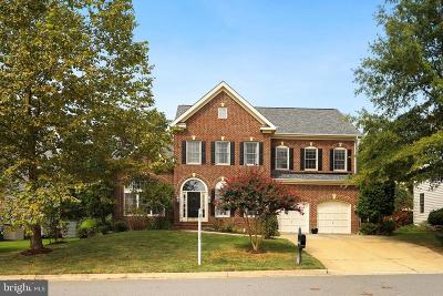 Leesburg Single Family Home For Sale: 18395 Rim Rock Circle
