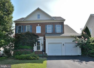Leesburg Single Family Home For Sale: 19130 Chartier Drive