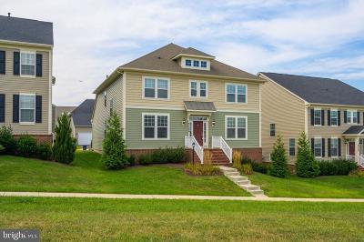 Ashburn Single Family Home For Sale: 42566 Glass Lane