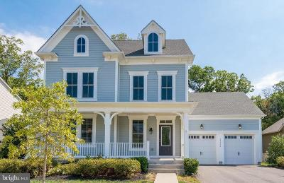 Aldie Single Family Home For Sale: 24966 Greengage Place