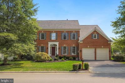 Leesburg Single Family Home For Sale: 18454 Shiso Court
