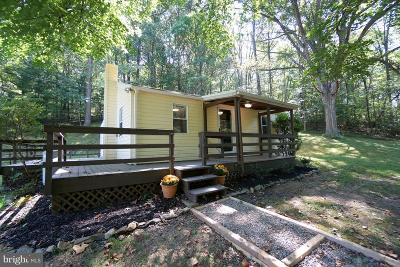 Purcellville Single Family Home For Sale: 37343 Branchriver Road