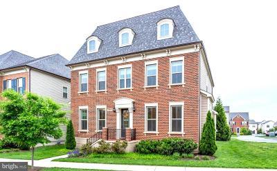 Ashburn Single Family Home For Sale: 20650 Holyoke Drive