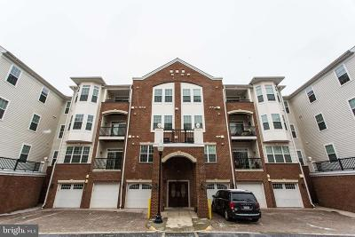 Manassas Condo For Sale: 9202 Charleston Drive #301