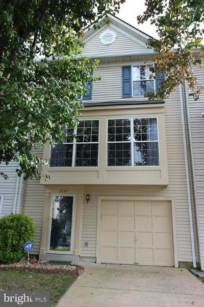 Manassas Park Rental For Rent: 9207 Kristy Drive
