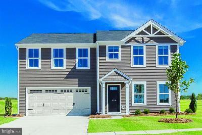 Orange County Single Family Home For Sale: Pheasant Ridge Road