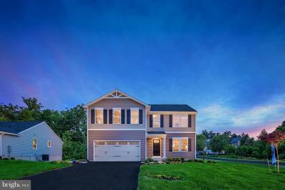 Orange County Single Family Home For Sale: 1114 Pheasant Ridge Road