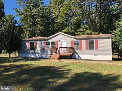 Rapidan VA Single Family Home For Sale: $165,000