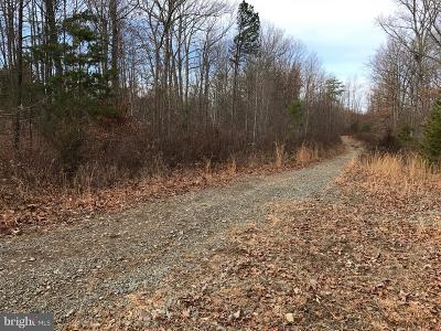 Orange County Residential Lots & Land For Sale: Black Walnut Run Road