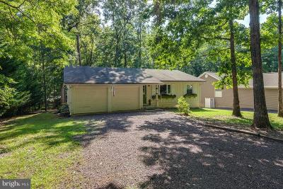 Locust Grove Single Family Home For Sale: 208 Creekside Drive