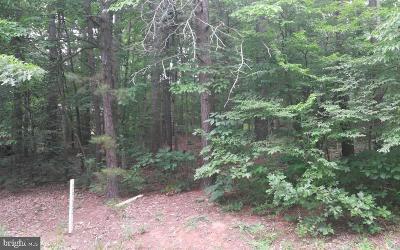 Residential Lots & Land For Sale: 209 Antietam Drive