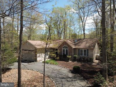Locust Grove VA Single Family Home For Sale: $275,000