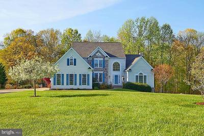 Orange County Single Family Home For Sale: 32315 Deep Meadow Lane