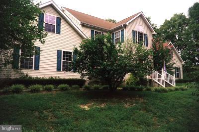Locust Grove VA Single Family Home For Sale: $510,900