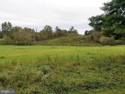 Orange County Residential Lots & Land For Sale: Zachary Taylor Highway