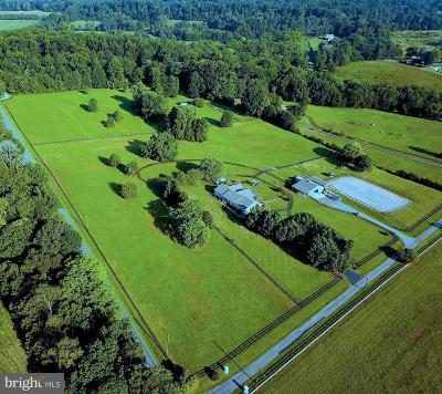 Orange County Single Family Home For Sale: 19104 Monteith Farm Road