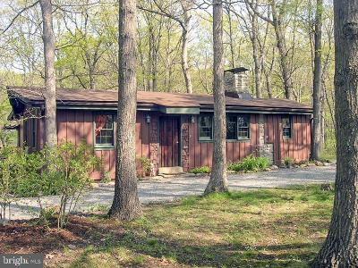 Luray Single Family Home For Sale: 307 Riverview Drive
