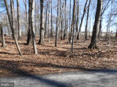 Page County Residential Lots & Land For Sale: Springfield Estates Drive