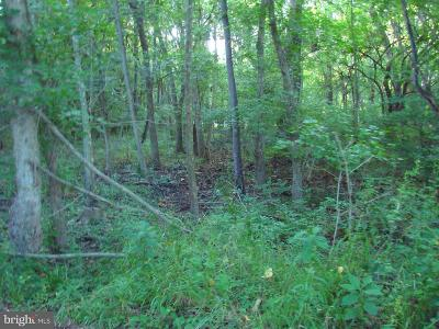 Page County Residential Lots & Land For Sale: Richview Road