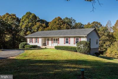 Bristow, Nokesville Single Family Home For Sale: 14110 Aspen Tree Lane