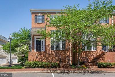 Woodbridge Rental For Rent: 710 Vestal Street