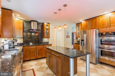 Nokesville Single Family Home For Sale: 9653 Marlette Drive